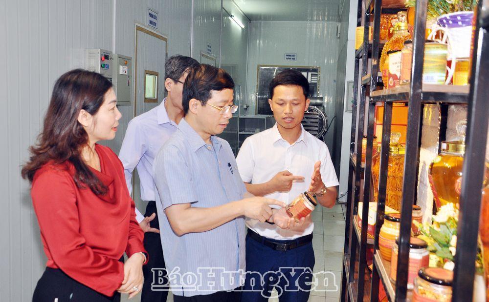 Đồng chí Phó Bí thư Thường trực Tỉnh ủy Nguyễn Duy Hưng thăm mô hình kinh tế của anh Nguyễn Văn Tú ở xã Phú Thịnh (Kim Động)